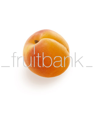Fruitbank Foto: Aprikose UK003005