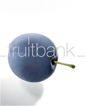 Fruitbank Foto: Pflaume UK032005