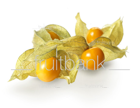 Fruitbank Foto: Physalis UK039008