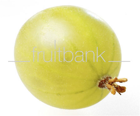 Fruitbank Foto: Grüne Stachelbeere UK034010